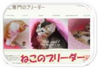 image_side_banner_neko-thumb2.jpg